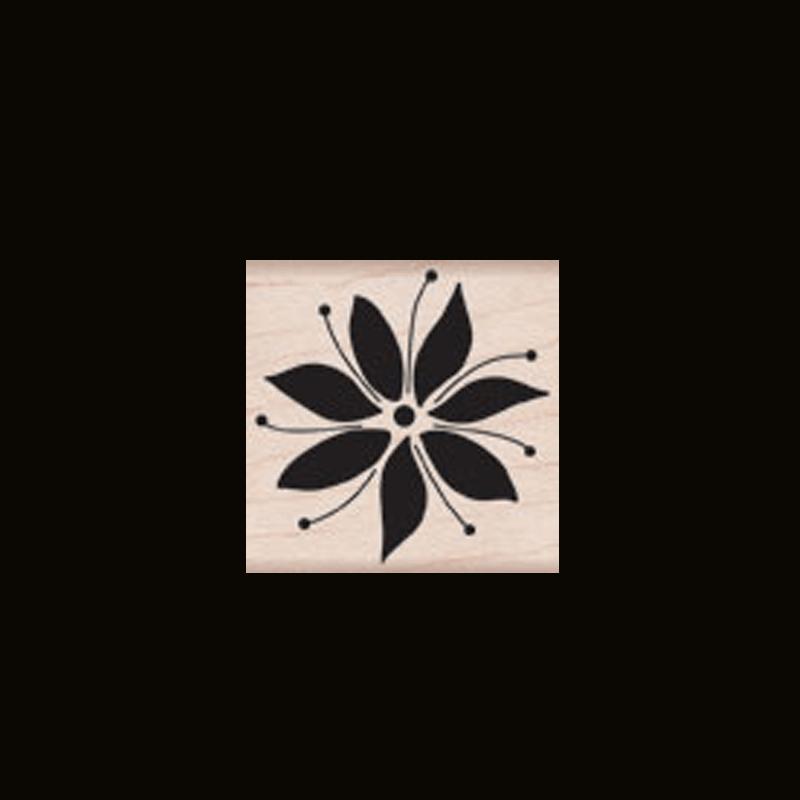 B5085 POINSETTA BLOOM חותמת גומי על עץ צמיחת פרח הפוינסטיה