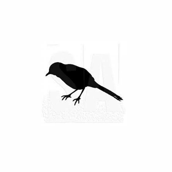 BIRD-LOOKING-DOWN חותמת גומי על עץ ציפור מסתכלת למטה של טים הולץ