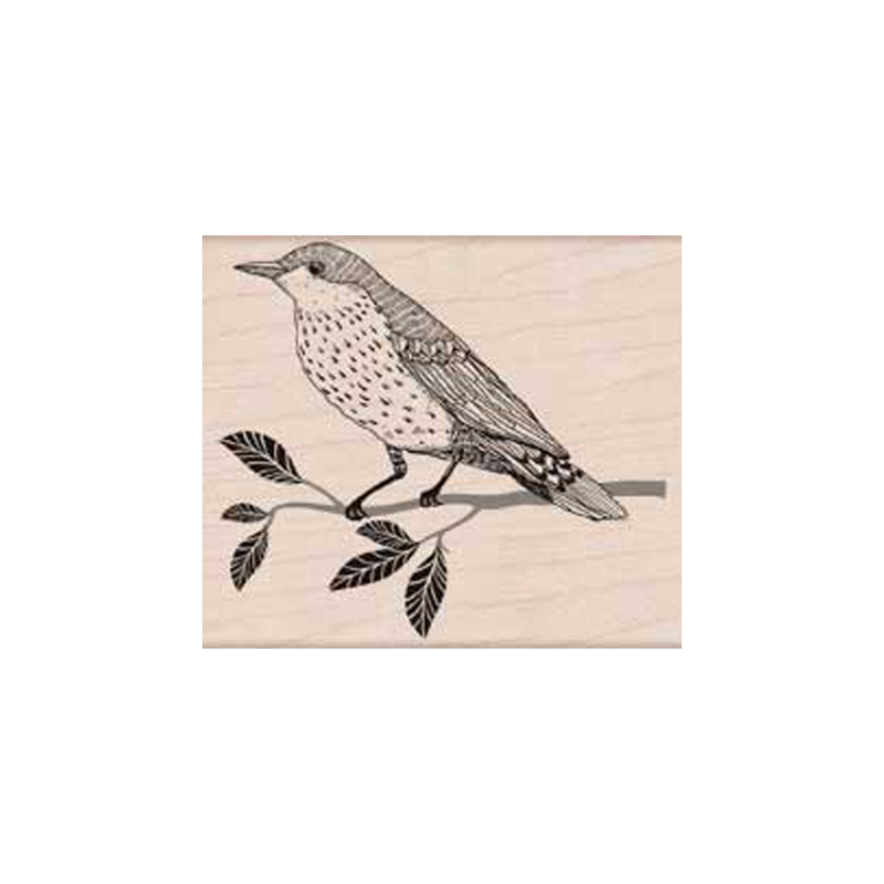 H5719 WISE BIRD חותמת גומי על עץ ציפור על ענף