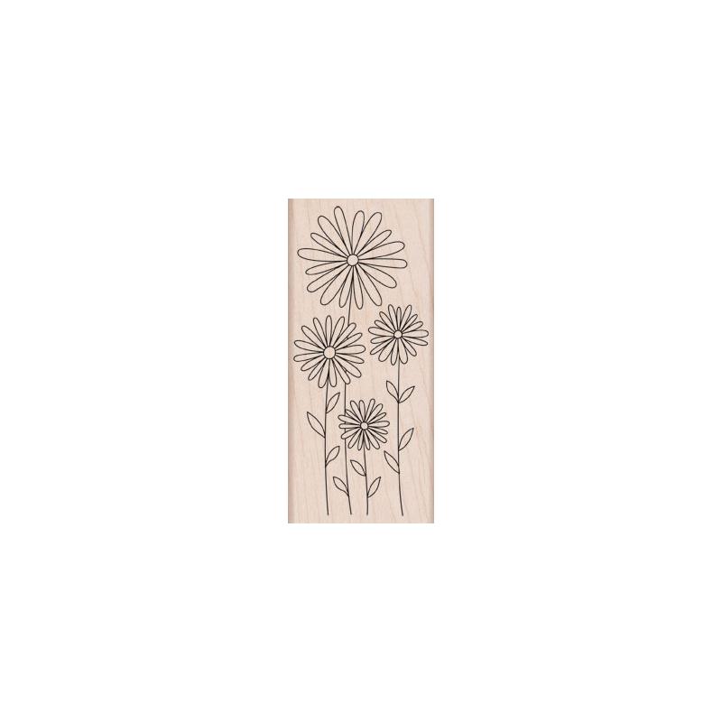 K5586 DASIES חותמת גומי על עץ חינניות