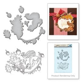 SDS-041-Squirrel-Stamp--Die-Set-by-Stephanie-Low-combo__92815.1479760627