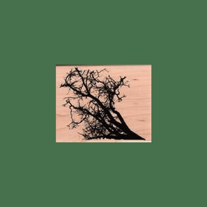 חותמת גומי על עץ ענפים של טים הולץ