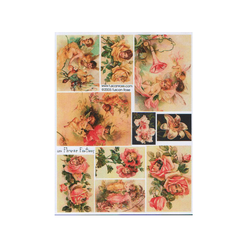 FLOWER-FANTASY תמונות פנטזיה של פרחים